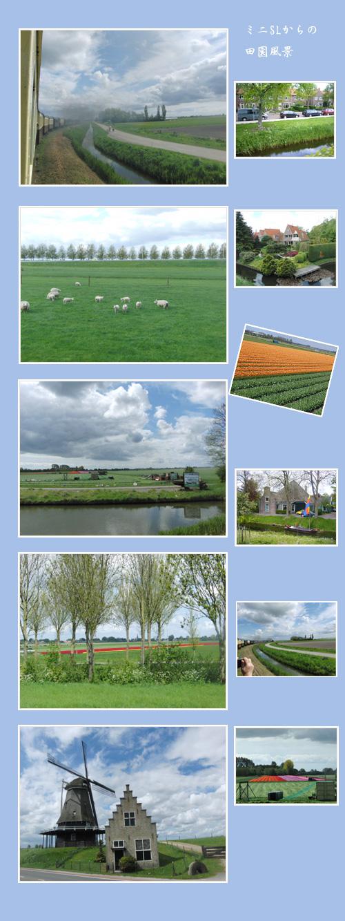 オランダ・ベルギーへ(1)_c0051105_14313793.jpg