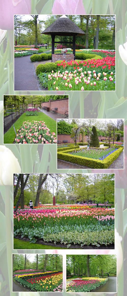 オランダ・ベルギー(2)_c0051105_2251723.jpg
