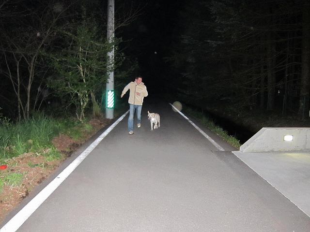 追いかけごっこをした夜_e0192217_19544921.jpg