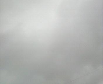 雨が止まない_d0150722_17534111.jpg