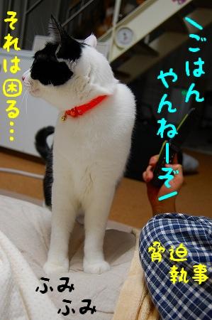c0181639_142254.jpg