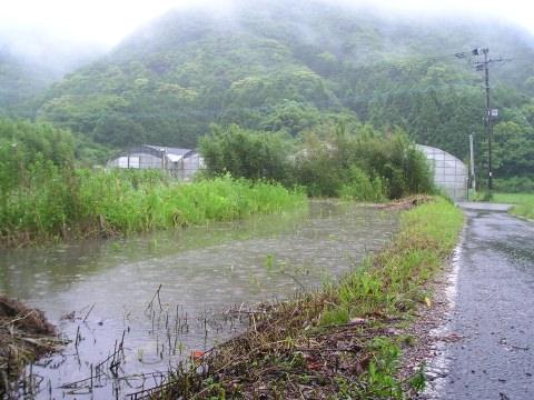 今日の天草は大雨でした_a0030256_21565951.jpg