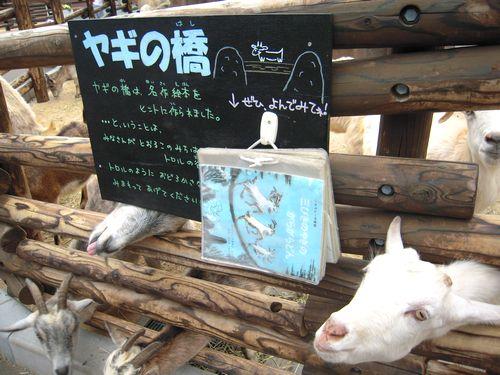 ヤギ山ガイド_b0024758_0434159.jpg