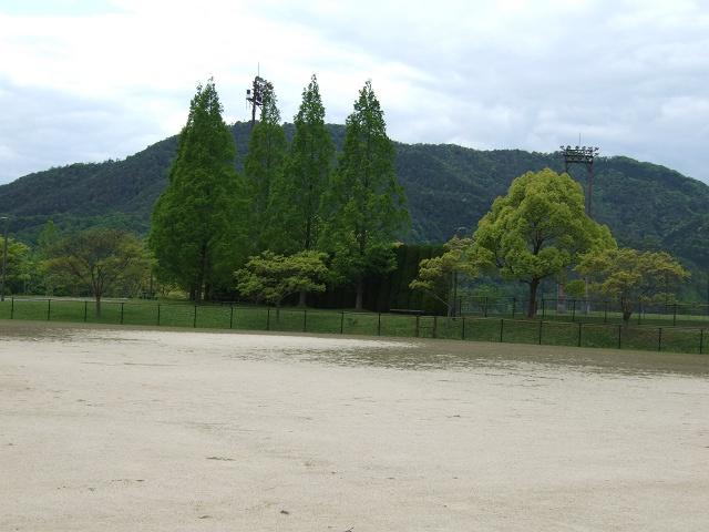 瀬野川公園・新緑の季節を歩く その4 ソフトボール場_b0095061_12472768.jpg
