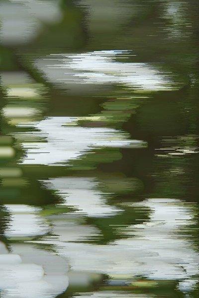 f0103667_12402691.jpg
