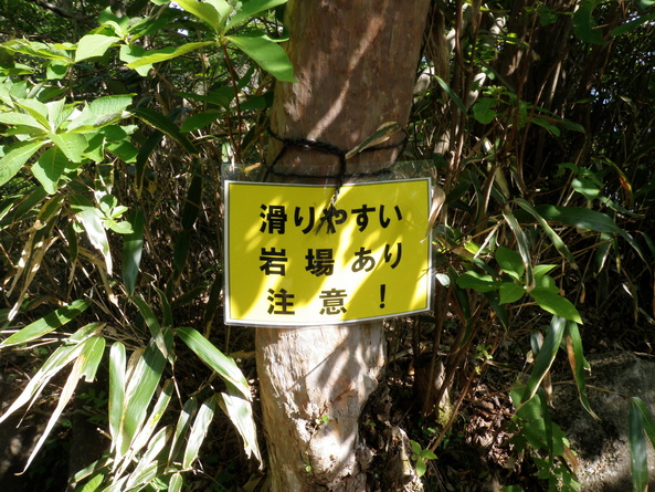 五月晴れの筑波山トレイルランニング(本編)_d0122797_1519671.jpg