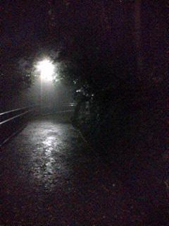 雨、夜道、灯_f0235201_029518.jpg