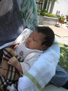 赤ちゃんのいる生活(生後1ヶ月)_a0046305_16203849.jpg