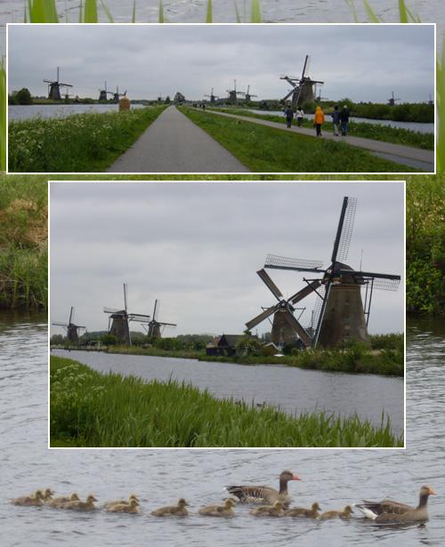 オランダ・ベルギー(2)_c0051105_027188.jpg