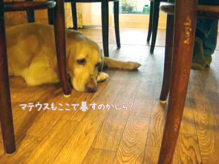 お預り_f0064906_1904579.jpg