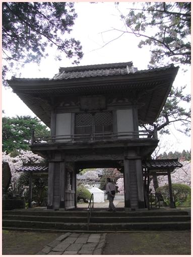 松前の桜_c0073015_2221302.jpg