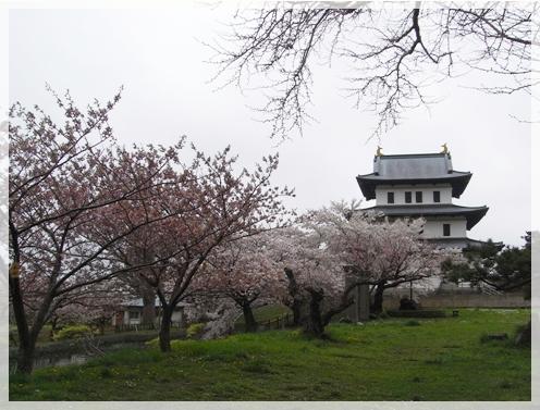 松前の桜_c0073015_2222179.jpg