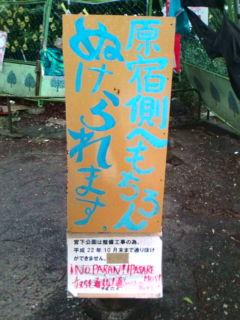 宮下公園をナイキ公園化から守れ!_e0094315_13284551.jpg