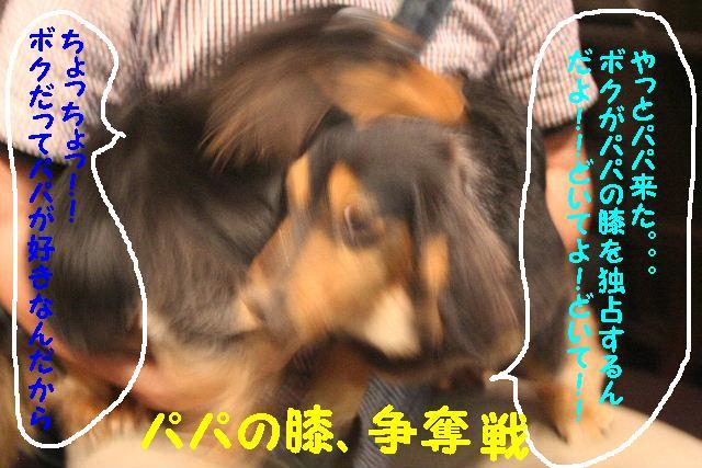 b0130018_16134050.jpg