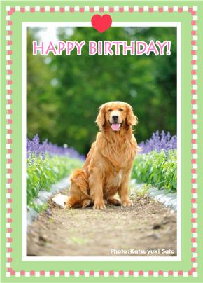 すばるくん、お誕生日おめでとう♪_d0102523_1223484.jpg