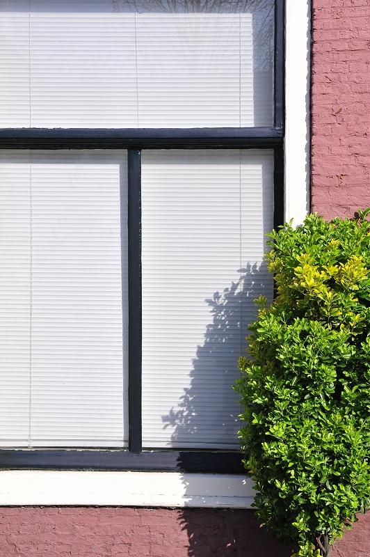 オランダ ハーグの窓辺_f0050534_10353790.jpg