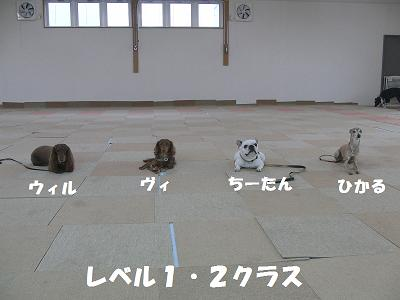 f0186040_224354.jpg