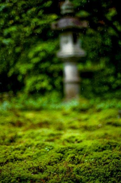 寺かふぇ in 龍津寺_c0150383_21235073.jpg