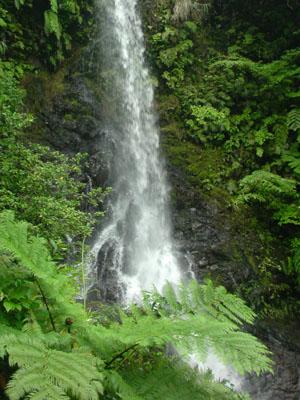 水ほとばしる嘉入の滝_e0028387_23292449.jpg