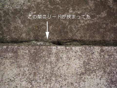 b0134197_1232025.jpg
