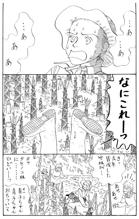 その22 <タケノコ退治>_a0119520_16305761.jpg