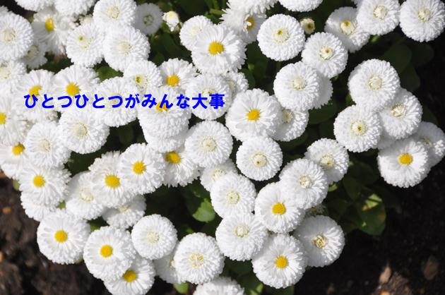 e0171573_21354119.jpg