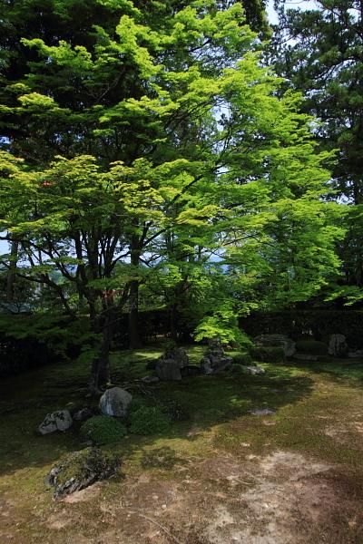 洛北・庭園めぐり_e0051888_22581283.jpg