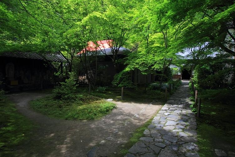 洛北・庭園めぐり_e0051888_230339.jpg