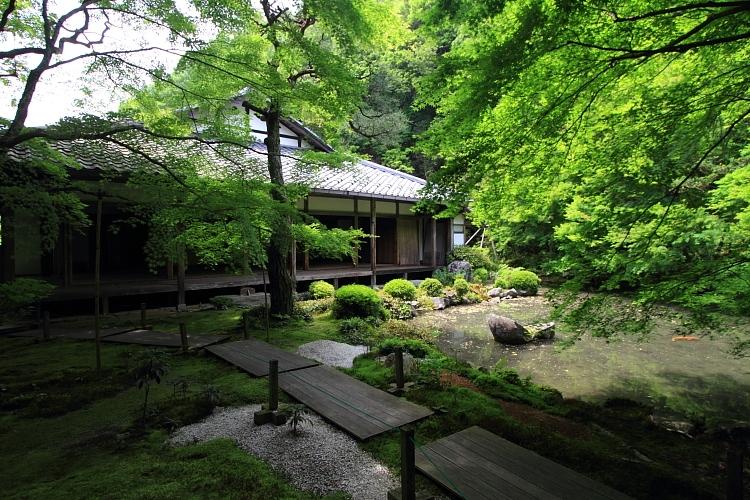 洛北・庭園めぐり_e0051888_2311889.jpg