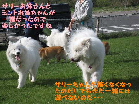 f0212597_630474.jpg
