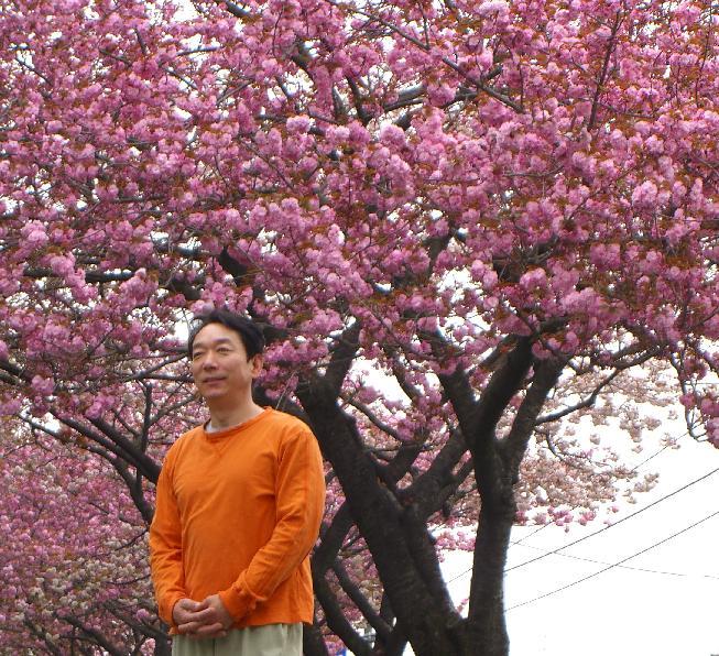 八重桜_e0077899_109494.jpg
