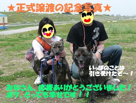 f0121712_653415.jpg