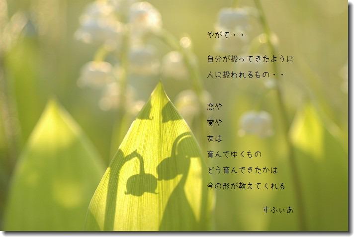 b0152416_1664982.jpg
