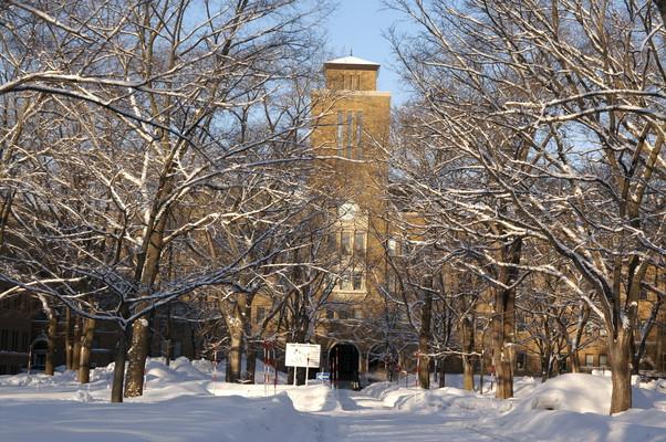 2010年 冬から春へ 北大キャンパス_c0219616_10321633.jpg