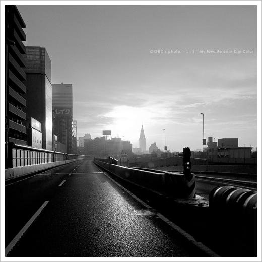 朝日に向かって…_e0117517_18101031.jpg