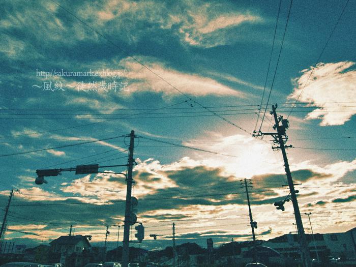 風の強い一日。_f0235723_20123497.jpg