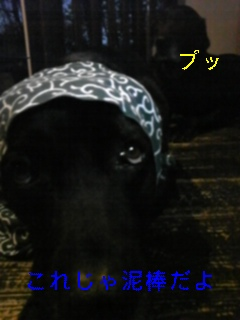 ドロ_f0148927_19264015.jpg