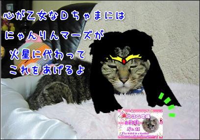 d0139352_112143.jpg