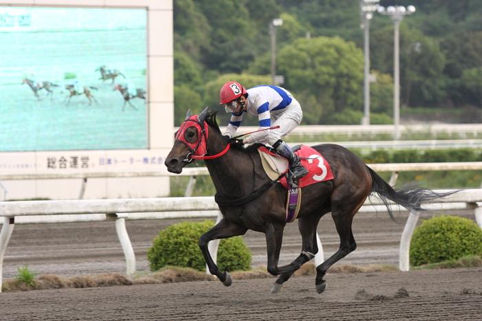 2010年5月21日(金) 高知競馬 5R C2ロ その2_a0077663_17195946.jpg