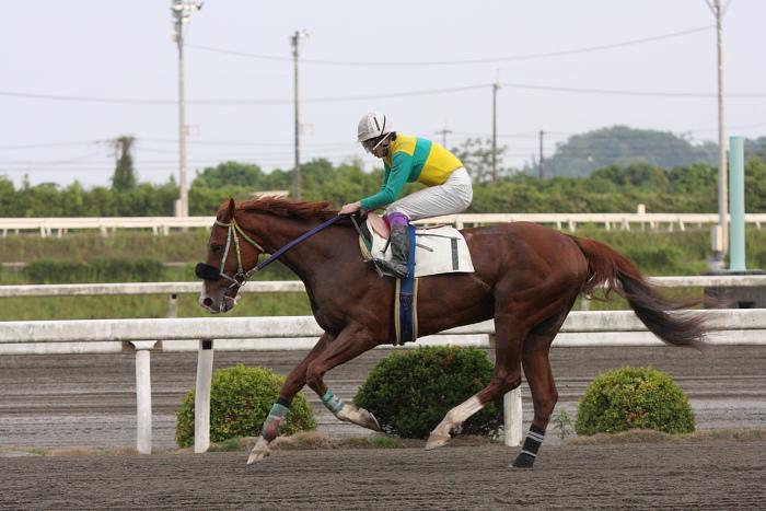 2010年5月21日(金) 高知競馬 5R C2ロ その2_a0077663_1720275.jpg