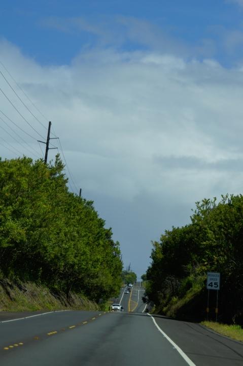 ハワイ島旅行記2010 ー4日目・ハワイ島ほぼ1周ドライブ後半(その2:アカカと虹とホノムの町)- _f0189086_19322298.jpg