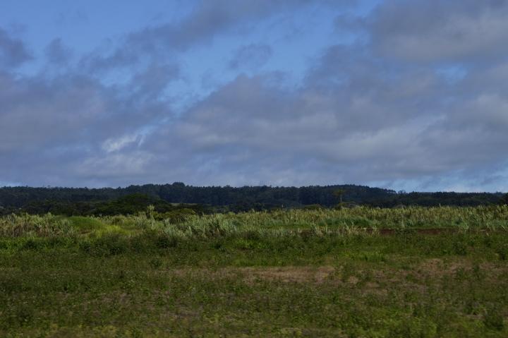 ハワイ島旅行記2010 ー4日目・ハワイ島ほぼ1周ドライブ後半(その2:アカカと虹とホノムの町)- _f0189086_1934184.jpg