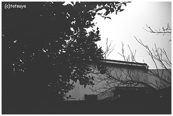 2010/05/26_f0139991_21184620.jpg