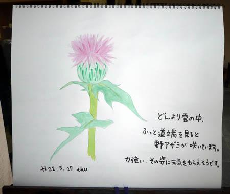 あざみ_c0151900_17111668.jpg