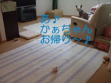 f0179203_1929575.jpg