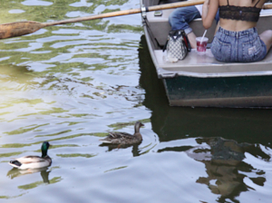 セントラルパークの貸ボートが気持ち良い季節になりました_b0007805_21561889.jpg