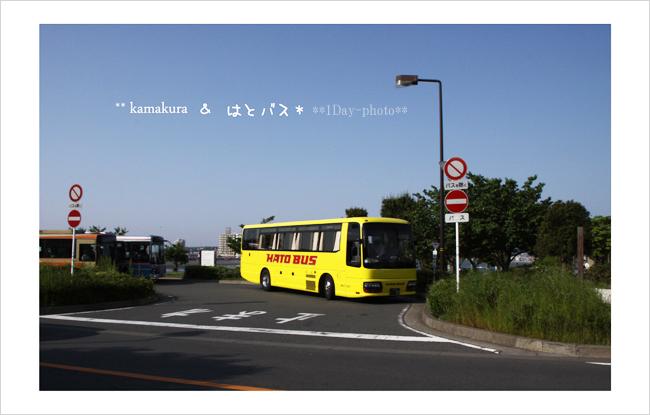 b0111005_1817201.jpg