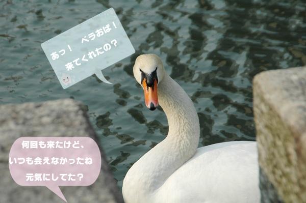 f0012718_727557.jpg