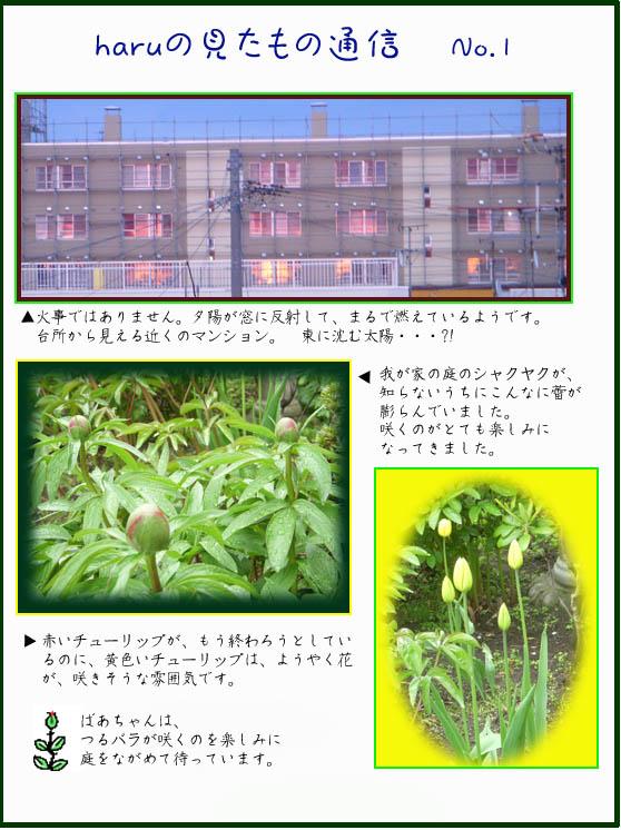 f0227323_1345937.jpg