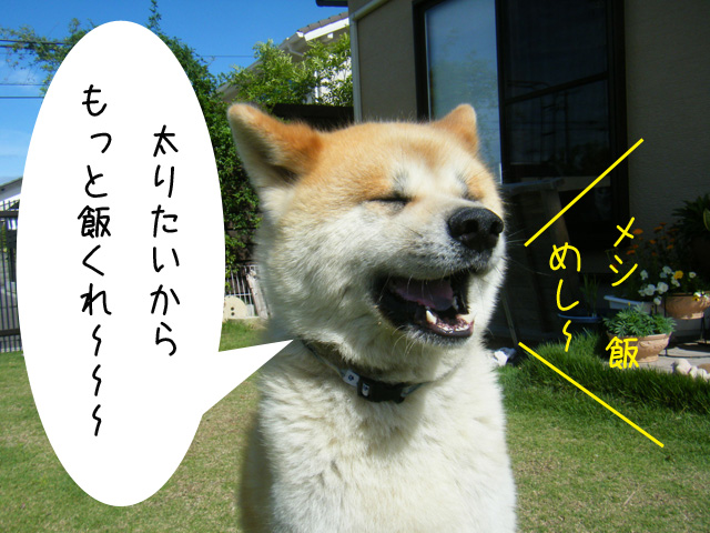 f0008935_904796.jpg